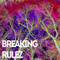 Breaking Rulez